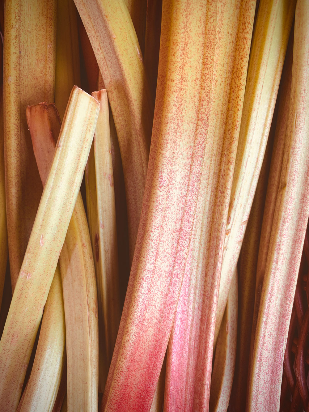 All You Need To Know About The Spring Superfood Rhubarb