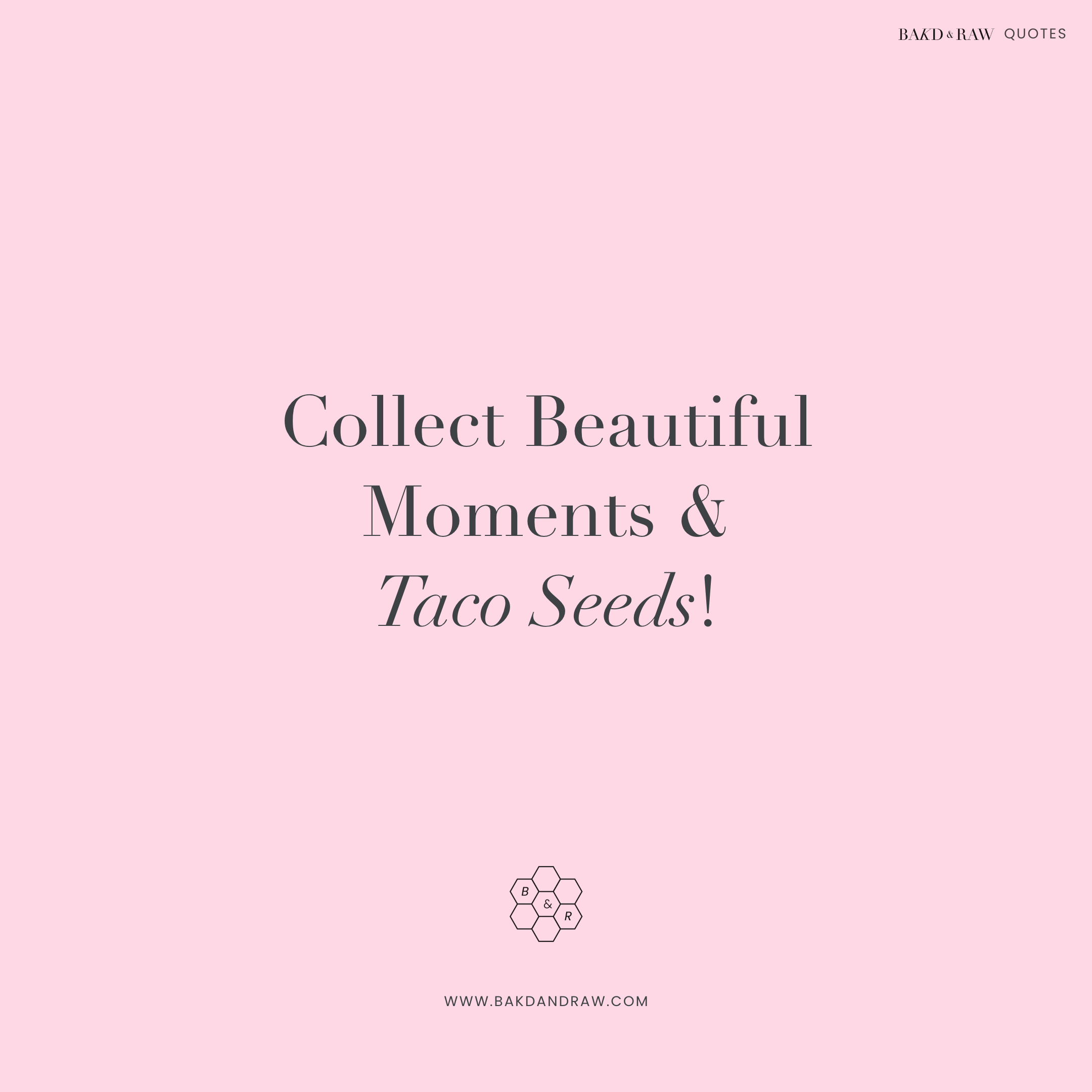 collect beautiful moments, Bakd&Raw Food Quotes by Karolin Baitinger