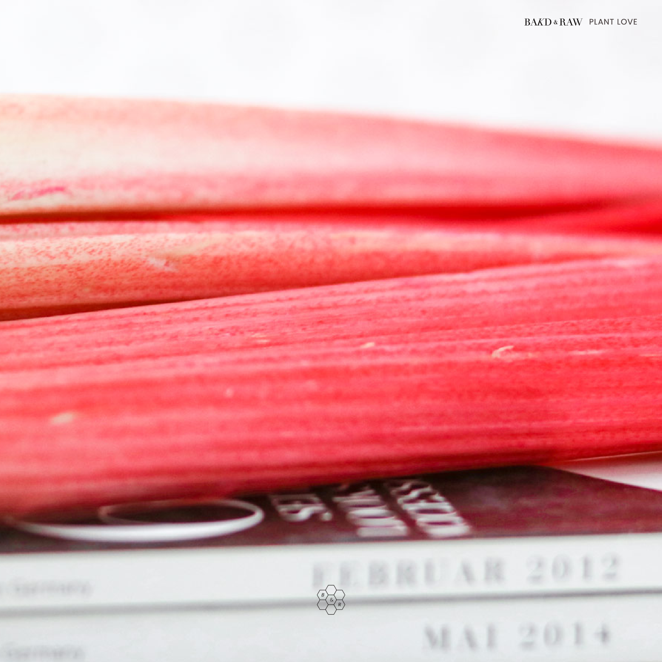 Rhubarb seasonal vegetable by Bakd&Raw, Karolin Baitinger