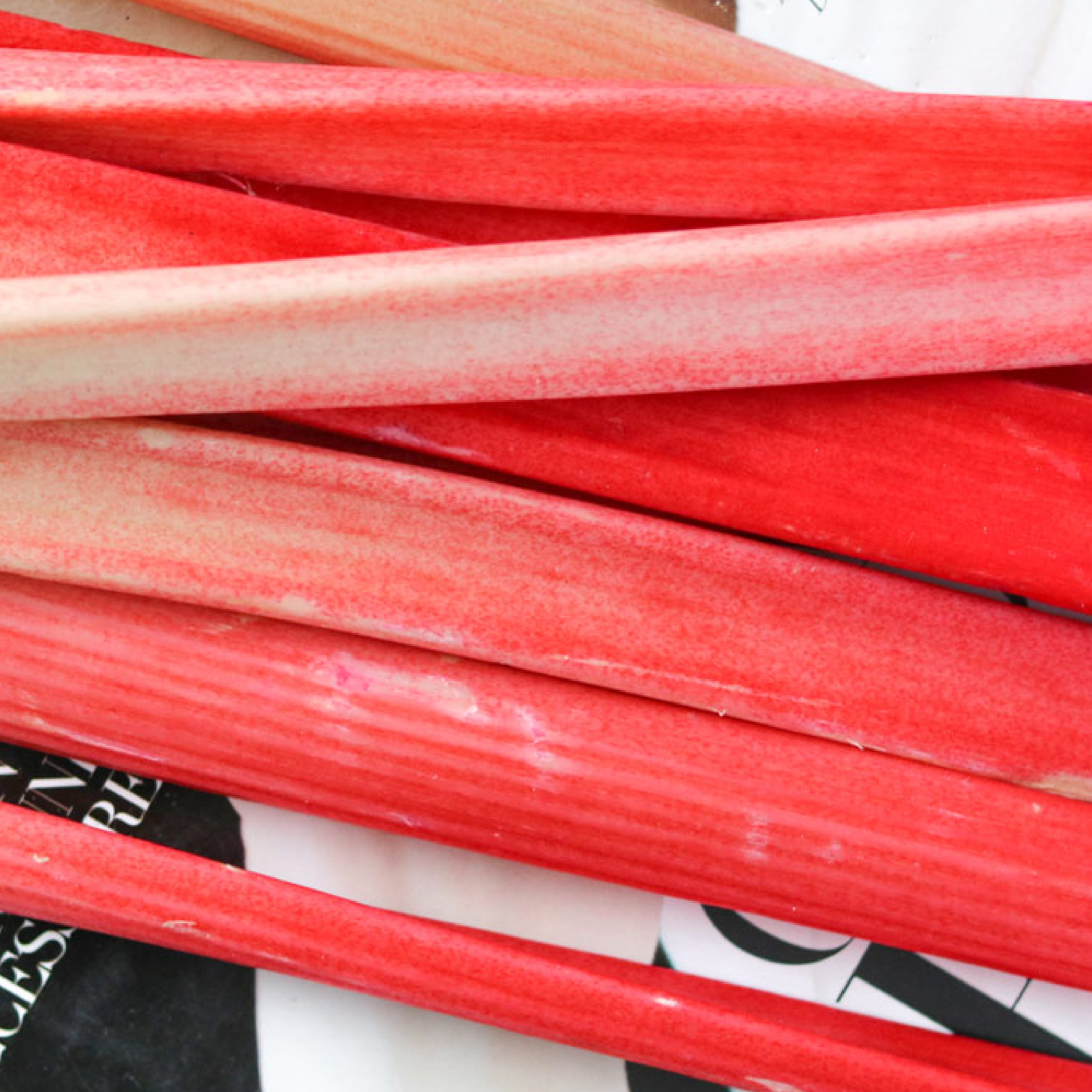 Rhubarb in bright pink by Bakd&Raw