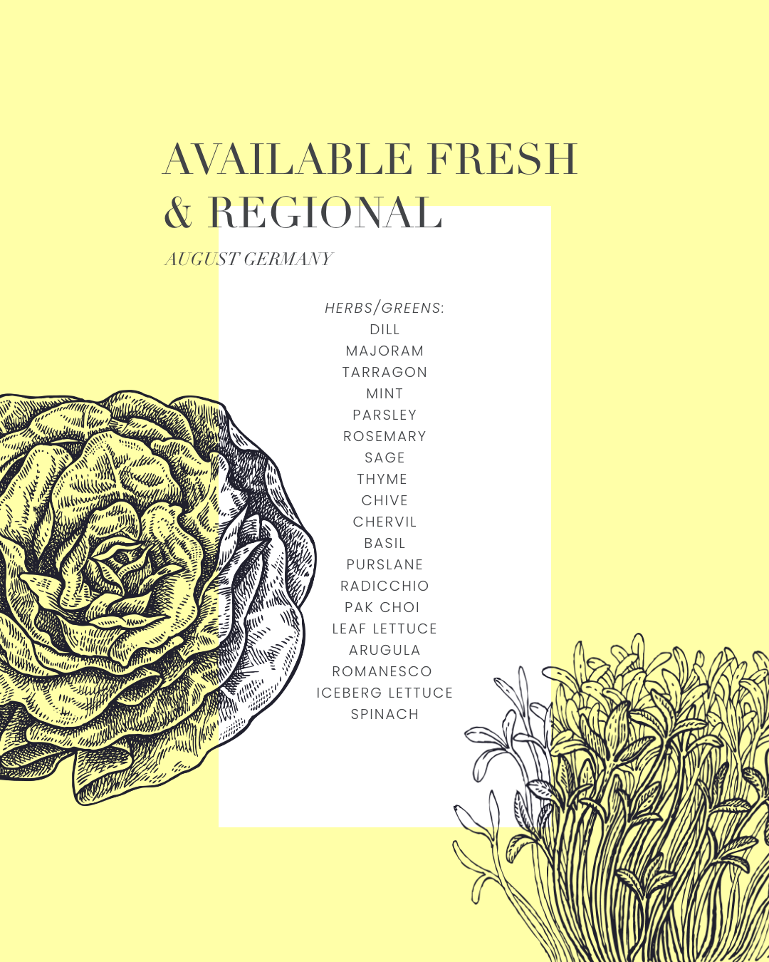 produce overview - available fresh and regional herbs and greens in august