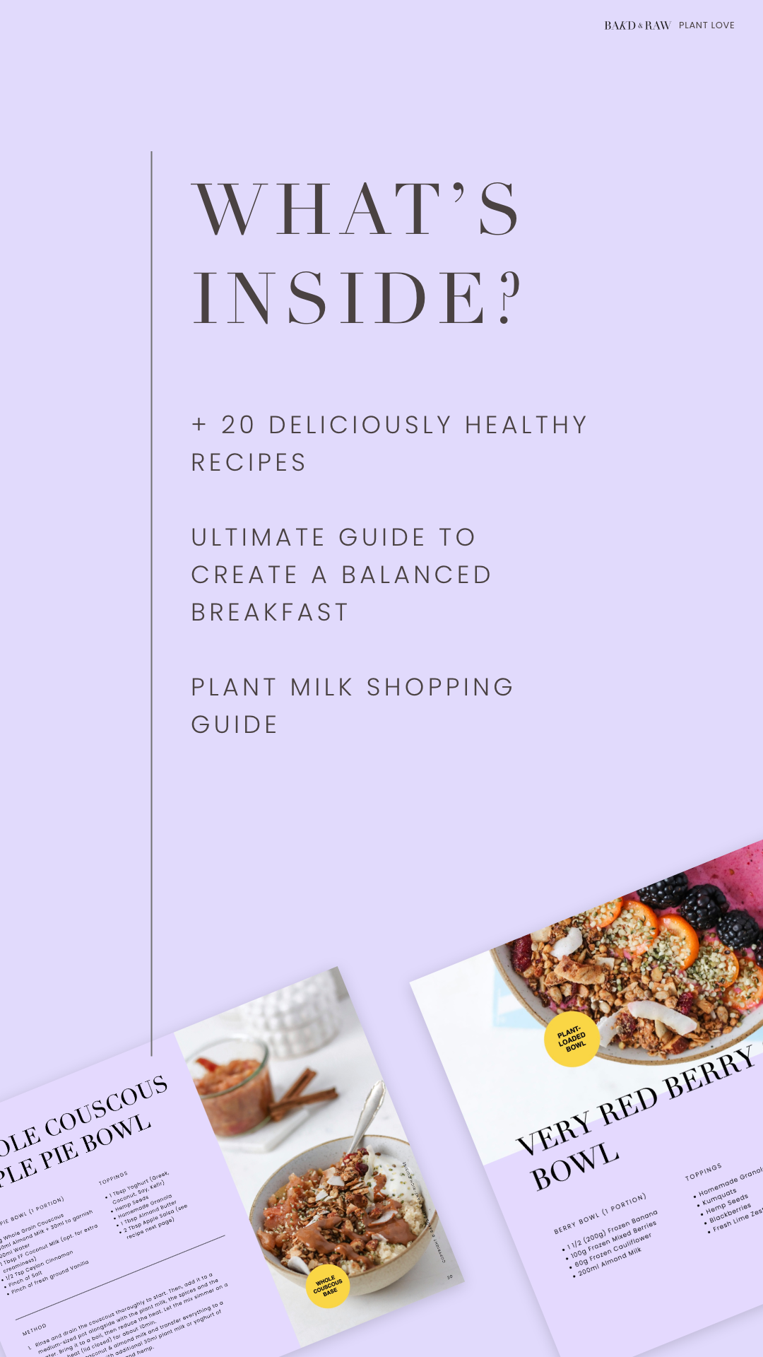 Whats inside the plant rich breakfast ebook