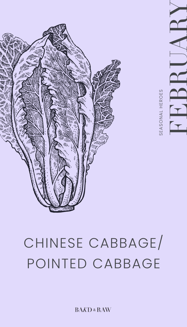 Seasonal Produce February Chinese cabbage and pointed cabbage