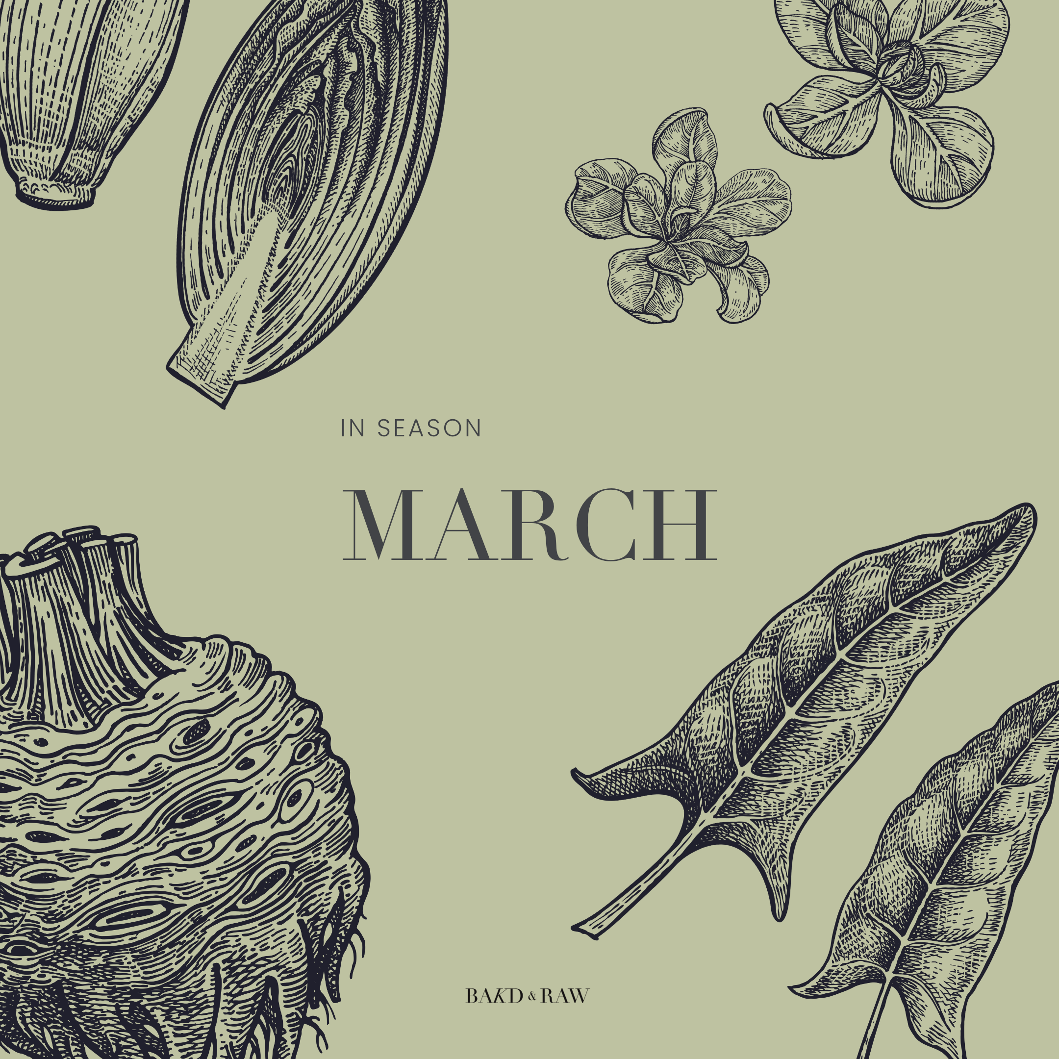 Seasonal Produce March Germany by Karolin Baitinger - Bakd&Raw