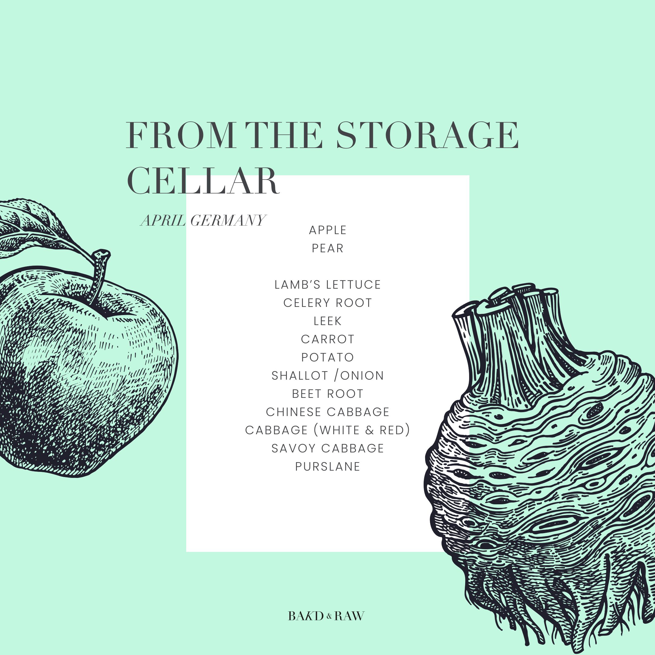 In Season in April, From the storage cellar by Bakd&Raw