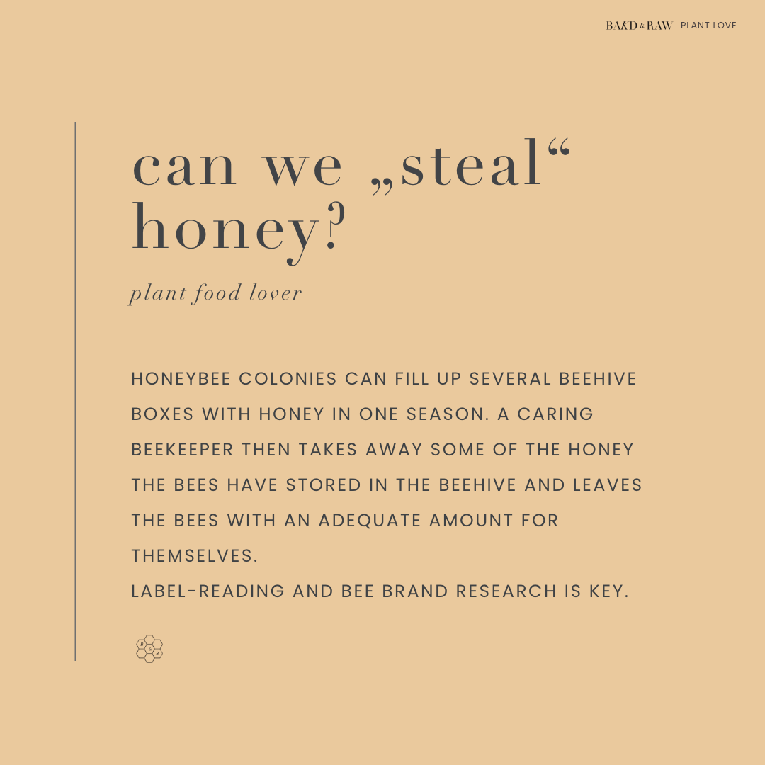 Should we steal honey from bees; A beginner