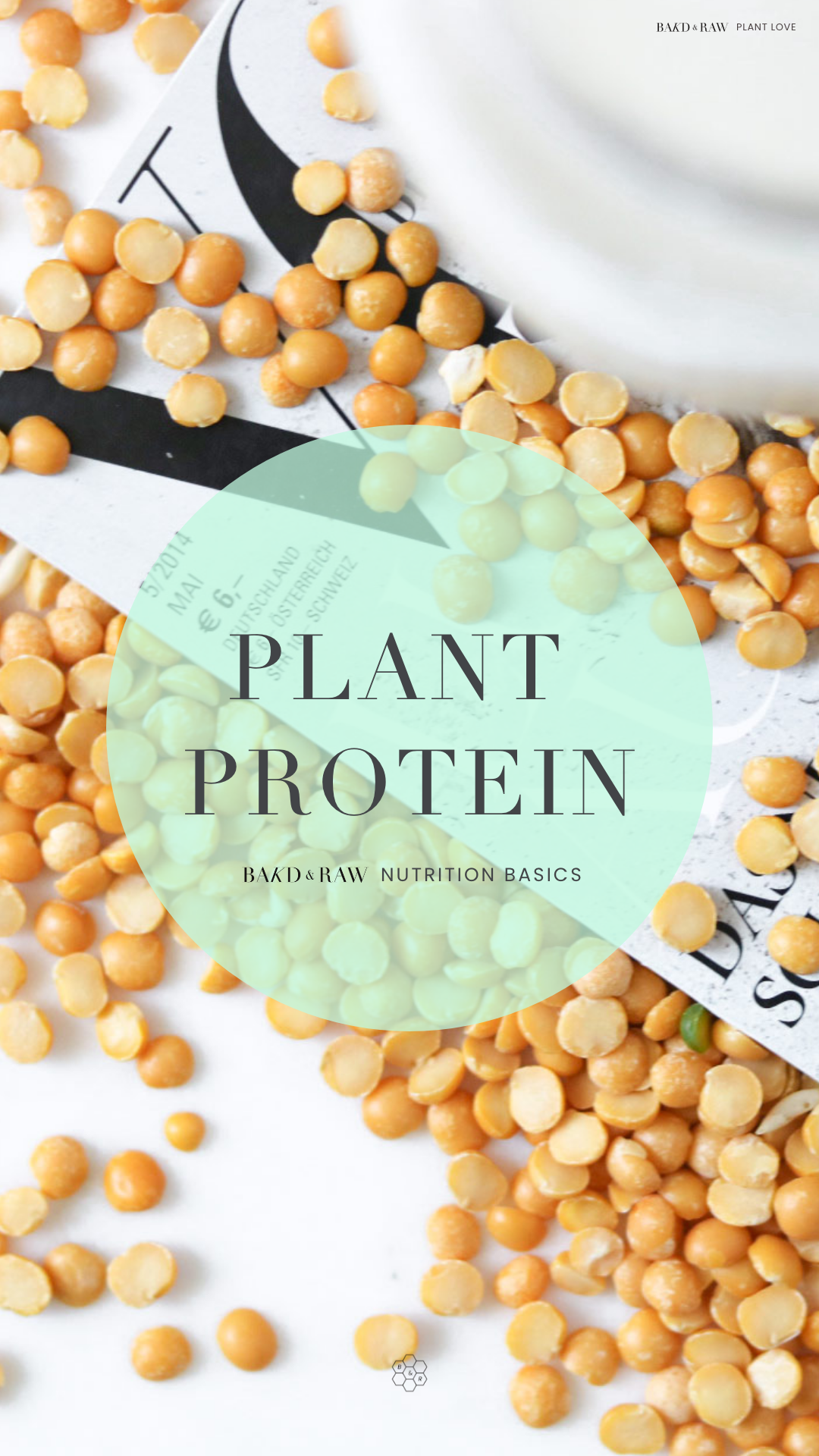 Bakd&Raw Plant Protein Guide; Yellow Peas