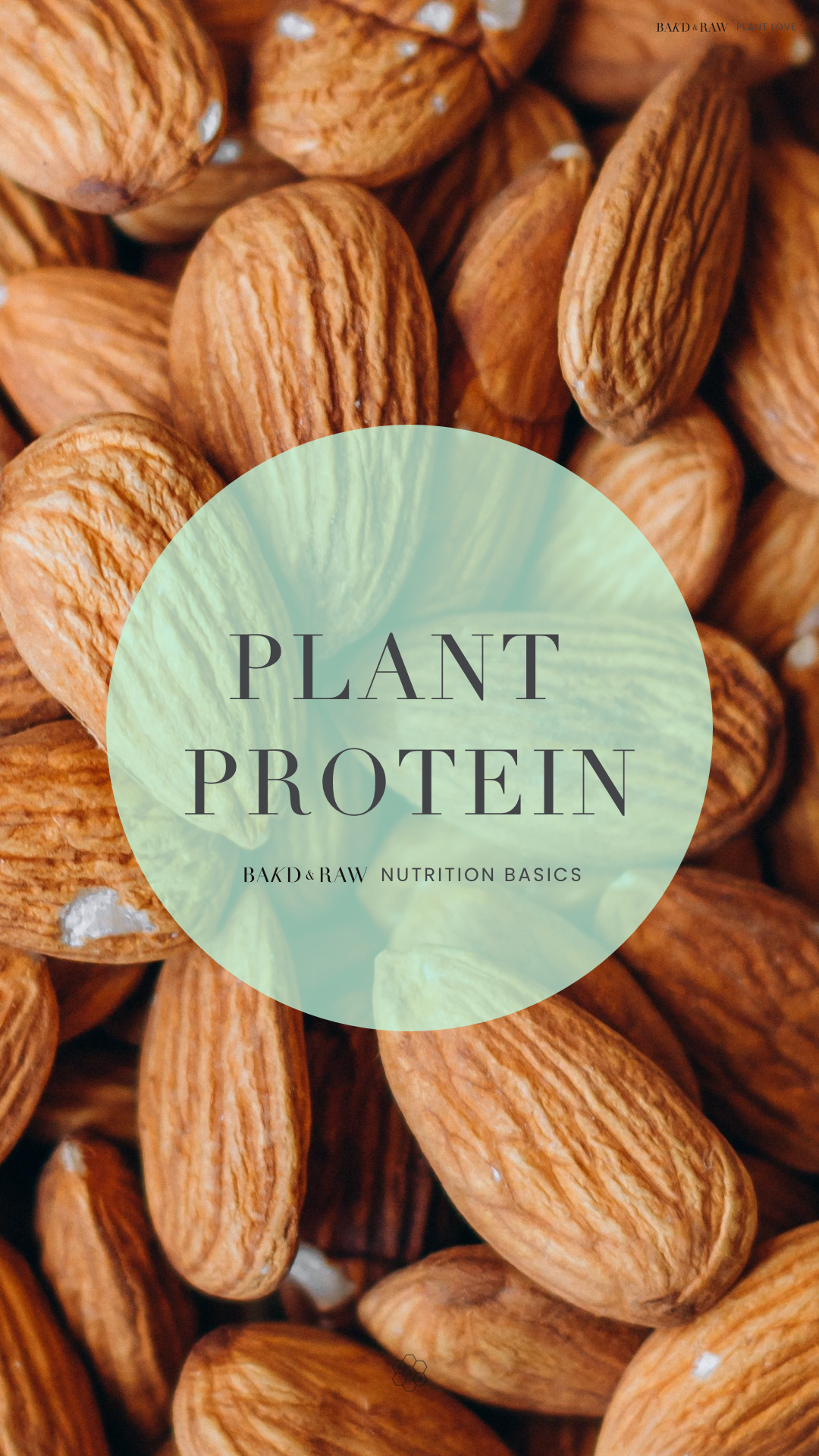 Bakd&Raw Plant Protein Guide; Nuts