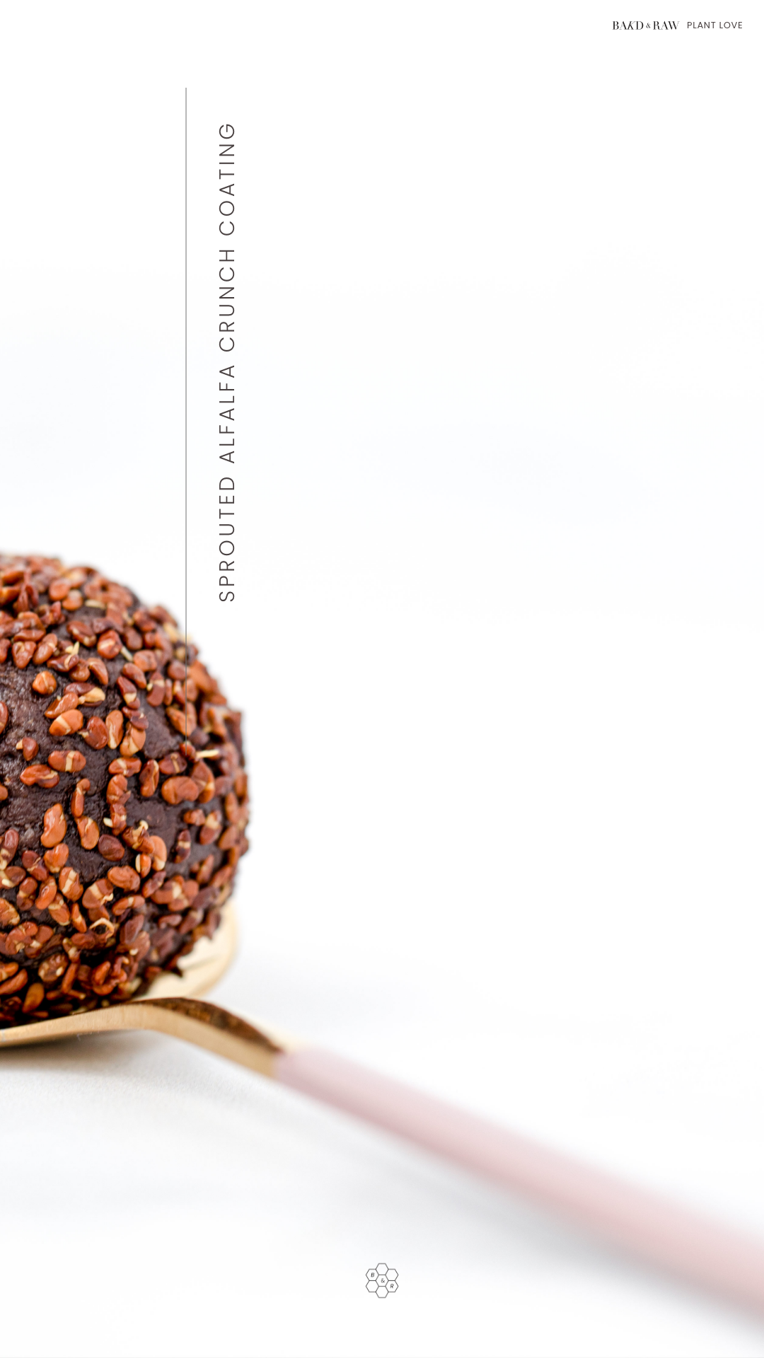 Super healthy Energy Ball Recipe by bakd&raw