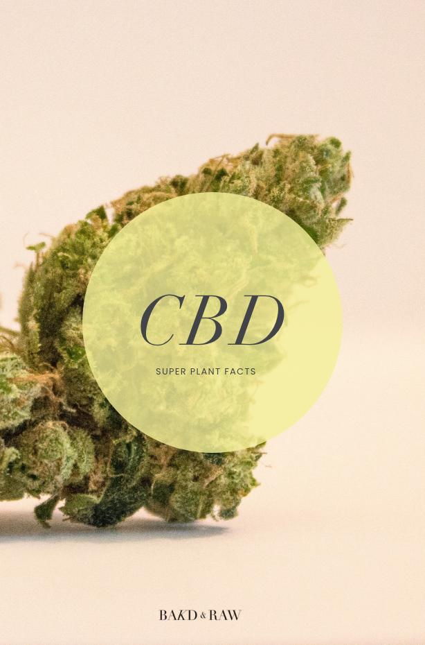 A Beginner's Guide To CBD - Plus my personal experience