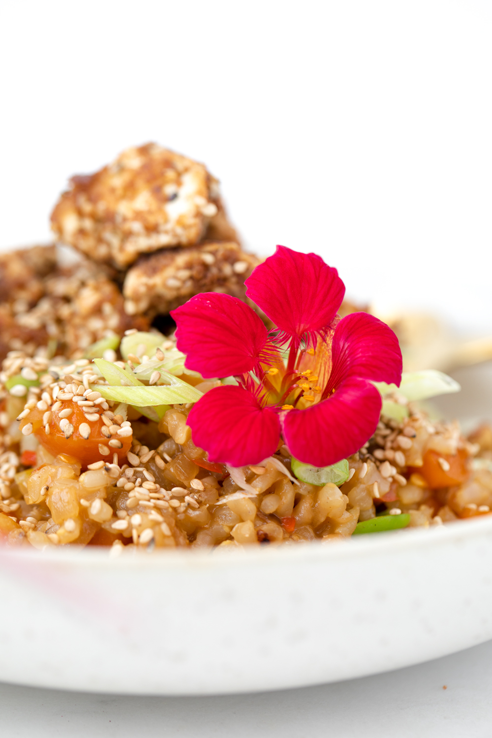 Sprouted Fried Rice with Tofu Chicken